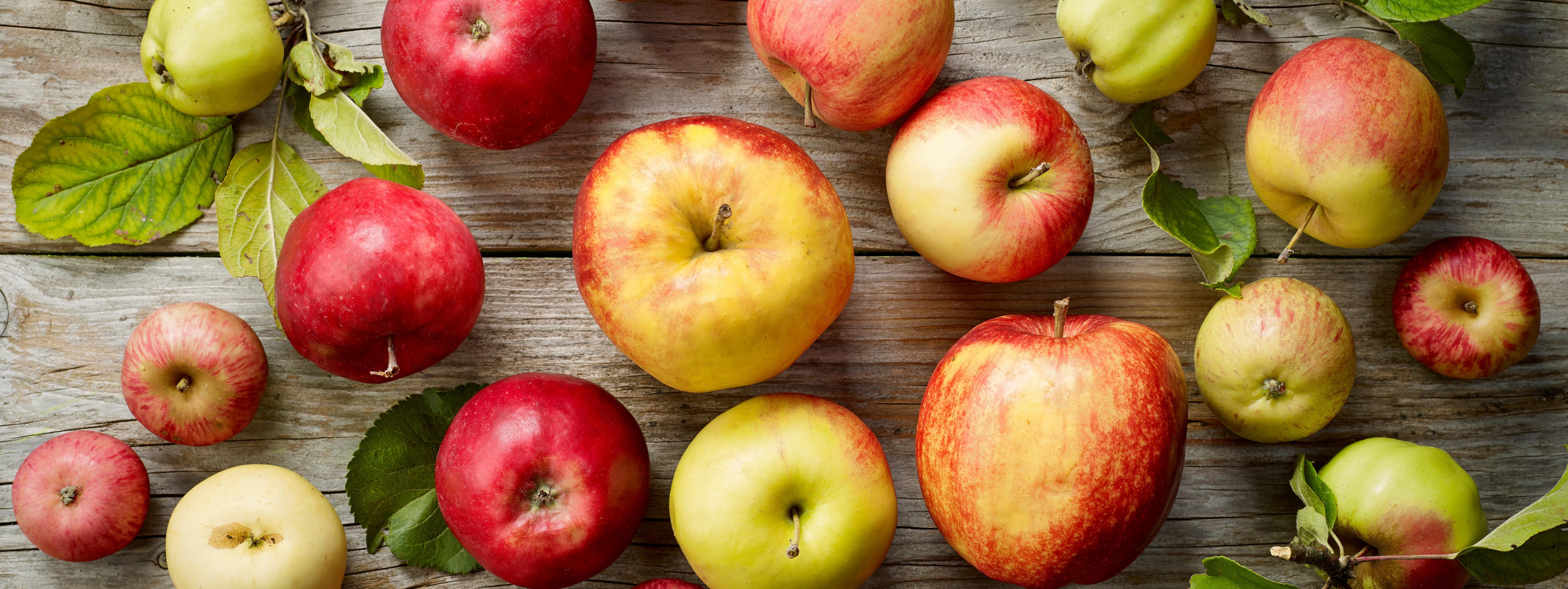 Apple Variety